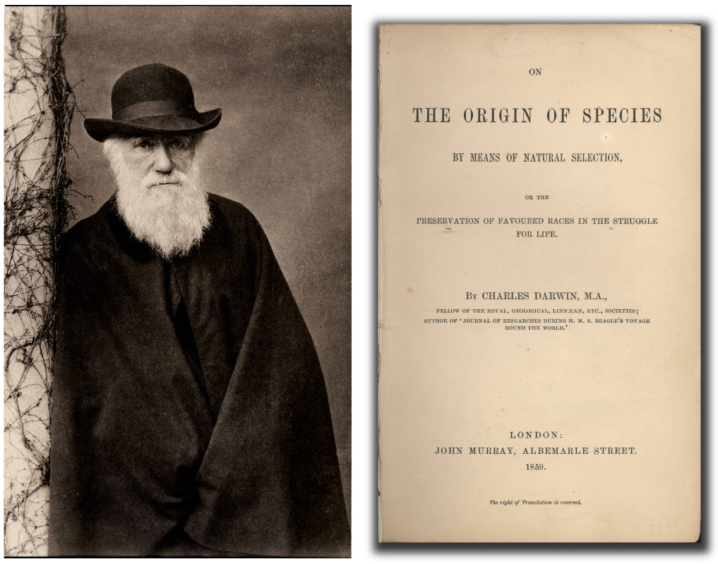 "the origin of the species by charles On the origin of species is a long work, but darwin, in the book's introduction, describes it as an ""abstract"" he had been working on a longer book, but decided to publish his core thoughts."